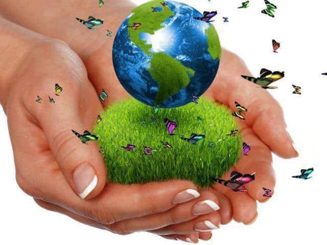 franquicia productos ecologicos